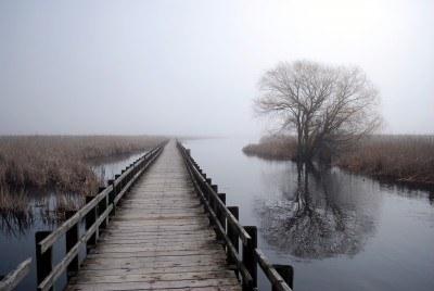 Essex County Pelee Park