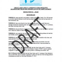 Resolution 2014 - 3. Microbeads EN